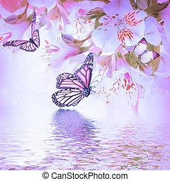 美しい, 花, 有色人種, blured, 蝶