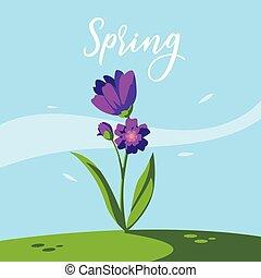 美しい, 花, 自然, 春現場, 草