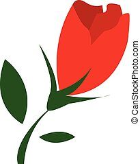 美しい, 花, 色, イラスト, チューリップ, ベクトル, ∥あるいは∥, 赤