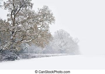 美しい, 距離, 冬, スペース, 薄れていく, テキスト, 木, 雪, 海原, 現場, 新しい, 森林, 大いに, 線...