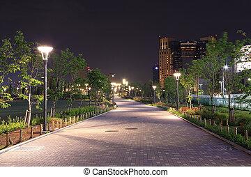 美しい, 通り道, ランプ, 庭, 夜