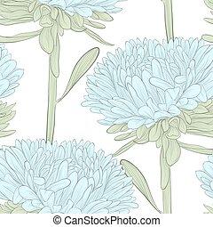 美しい, 青, アスター, seamless, 背景, 白い花