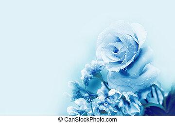 美しい, 青, バラ, 中に, マジック, ライト
