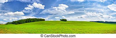 美しい, 青, パノラマ, 空, 緑, フィールド