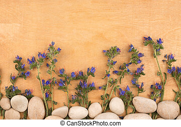 美しい, 青, 野生の花, そして, 白い石, 上に, a, 木製である, surface.