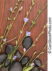 美しい, 青, 野生の花, そして, 黒, 石, 上に, a, 木製である, surface.