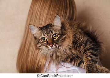 美しい, 面白い, 女性, 灰色, ふんわりしている, トラネコ猫, ベージュのバックグラウンド, 肩, しまのある, shoulder., ブロンド