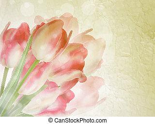 美しい, 10, 古い, eps, ペーパー, 背景, tulips.