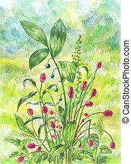 美しい, burnet, イラスト, 水彩画, フィールド, ブッシュ, 緑, 治癒, herbs.