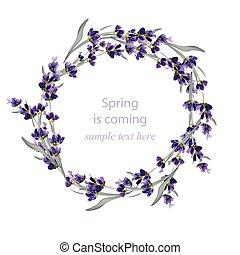 美しい, illustration., カード, 花輪, ラベンダー, 手, ベクトル, 感謝しなさい, 招待, 引かれる, あなた, 花, ∥あるいは∥, カード, 挨拶