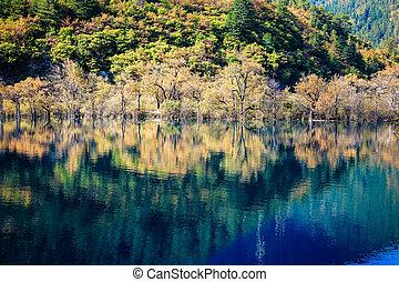 美しい, jiuzhaigou, 秋