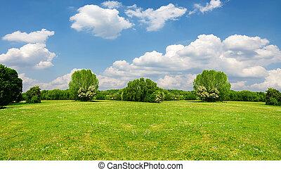 美しい, landscape.great, 背景, 旗