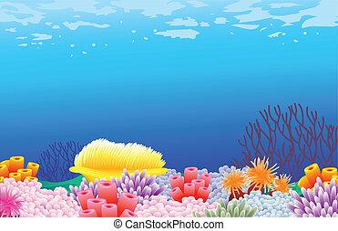 美しい, sealife, 背景