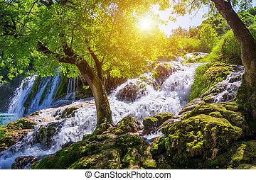 美しい, skradinski, 公園, 信じられないい, 国民, 訪問, 魔法, 滝, buk, krka, 場所, 滝, split., 分裂, europe., croatia, dalmatia, croatia.