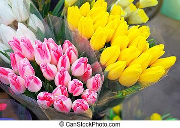 美しい, tulips., 春, 花束, 新鮮な花