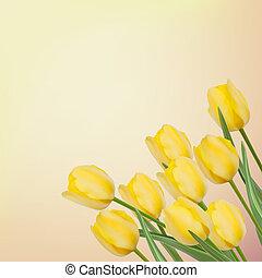 美しい, tulips., 春, eps, 背景, 8
