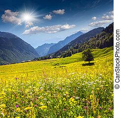 美しい, zhabeshi., 村, 光景, 牧草地, 高山