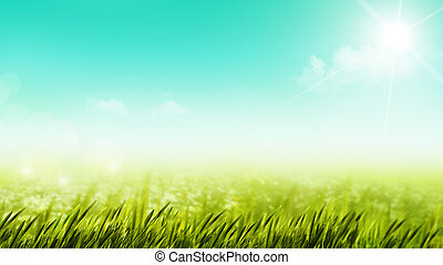 美しさ, 夏の日, 上に, ∥, 牧草地, 自然, 背景
