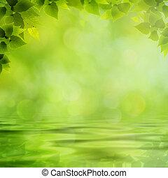 美しさ, 自然, 背景, ∥で∥, 反射, 上に, ∥, 水表面