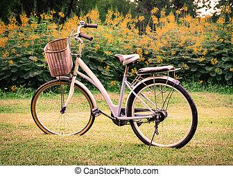 美丽, 公园, 自行车, 风景