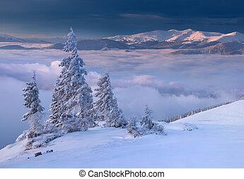 美丽, 冬季, 日出, 在中, the, 山。