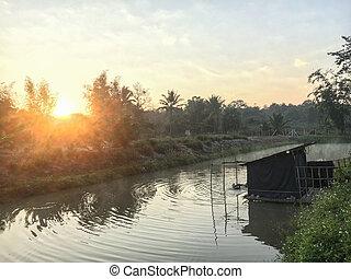 美丽, 北方, 湖, 早晨, 泰国, 薄雾