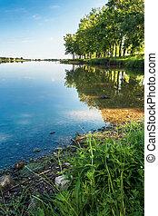 美丽, 夏天, 景色, 湖