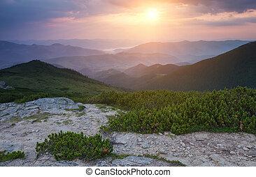 美丽, 夏天, 风景, 在中, the, 山。