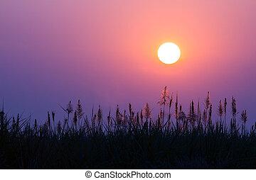 美丽, 日出