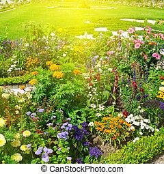 美丽, 花园, 同时,, 日出