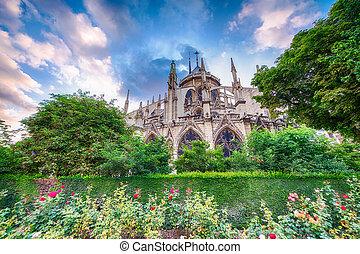 美丽, notre夫人大教堂, 察看, 带, 花园, 同时,, 花, -, pa