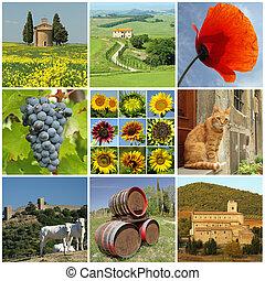 美丽, tuscany, 拼贴艺术