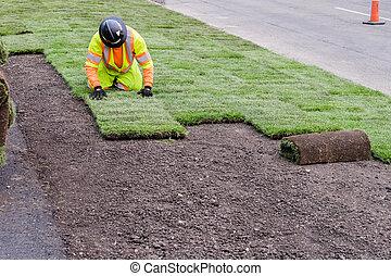 美化, 仕事, 取付け, 芝地