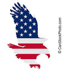 美國人, 大膽, 鷹