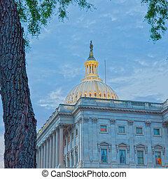 美國美國國會大廈, 華盛頓, 建築物
