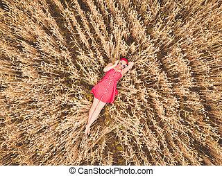 美麗的婦女, 空中, 收穫, 衣服, concept., 飛行, 躺, 年輕, 黃色, 太陽鏡, 雄峰, field., retro, 上面, 關閉, 觀點。, 農業, cornfield., 紅色, 小麥