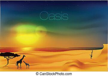 美麗, 傍晚, 沙漠