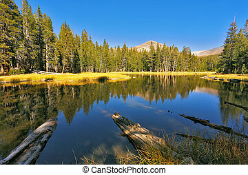 美麗, 國家公園, 湖, josemite