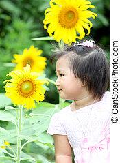 美麗, 孩子, 由于, 向日葵