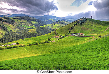 美麗, 山, 在, 安第斯山脈