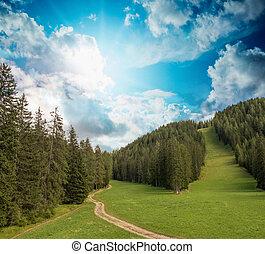 美麗, 山, 情節, alpin, summer., 風景, sunset.