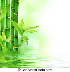 美麗, 新鮮, 竹子