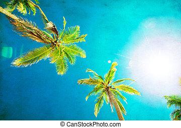 美麗, 椰子, 樹, 熱帶, 棕櫚, 背景