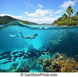 美麗, 珊瑚礁