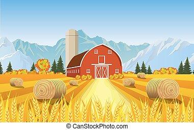 美麗, 農場, 秋天, 場景, 卡通