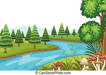 美麗, 風景, 自然