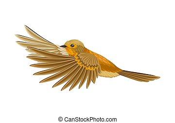 羽, beaked, イラスト, 脊椎動物, あご, 温血, ∥あるいは∥, 歯のない, aves, ベクトル