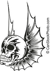 翼, 頭骨