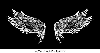 翼, 黒い鳥, 白い背景