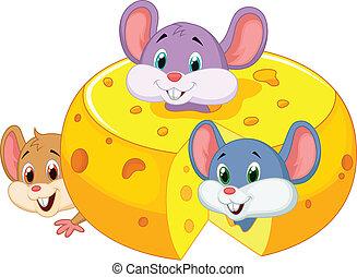 老鼠, 裡面, cheddar, 卡通, 隱藏
